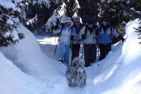 Schneeschuhtour für 4 - mit Huskybegleitung 12 [article_picture_small]