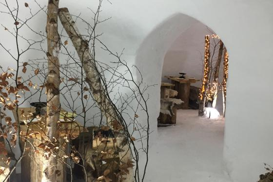 Fondue dans un igloo - pour 2 personnes, à Leysin (VD) 8 [article_picture_small]