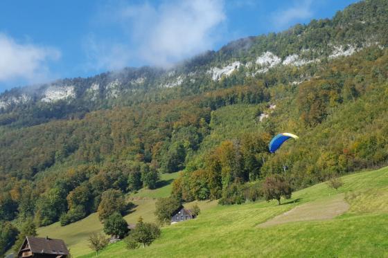 Gleitschirm Schnupperkurs - am Vierwaldstättersee 3 [article_picture_small]