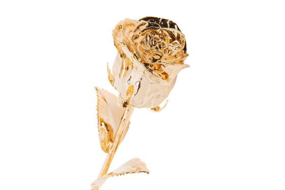 Goldrose (35 cm) Gold - in Leder-Geschenkbox