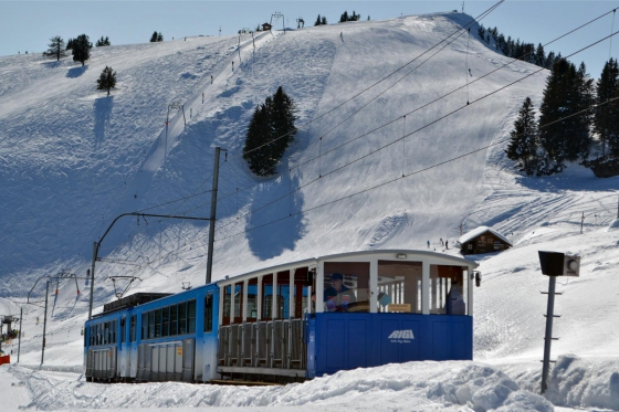 Wunderbarer Tag auf der Rigi - inkl. Schneeschuh-Tour, Fondue & Spa 2 [article_picture_small]