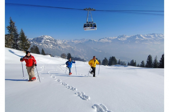Wunderbarer Tag auf der Rigi - inkl. Schneeschuh-Tour, Fondue & Spa 3 [article_picture_small]