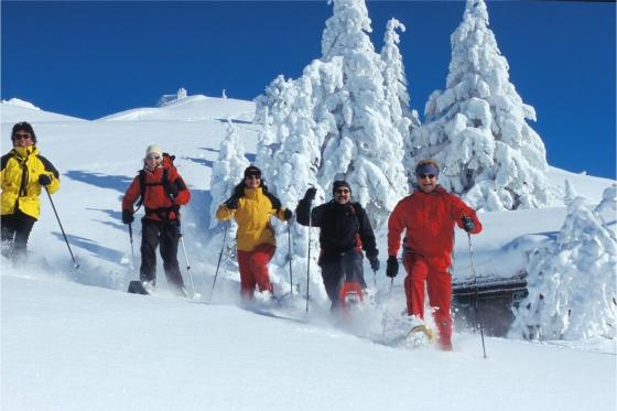 Wunderbarer Tag auf der Rigi - inkl. Schneeschuh-Tour, Fondue & Spa 4 [article_picture_small]