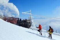 Winter-Dampffahrt auf die Rigi - Nostalgische Bergbahnfahrt ab Vitznau  (für Personen ohne Halbtax-Abo)