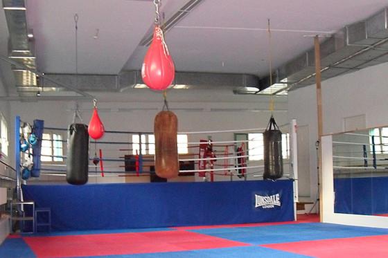 Fitnessboxen - 12 Lektionen 1 [article_picture_small]