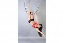 Aerial Hoop - Workshop