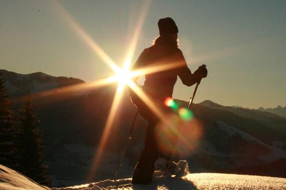Schneeschuhwanderung - bei Mondschein mit Fondueplausch  [article_picture_small]