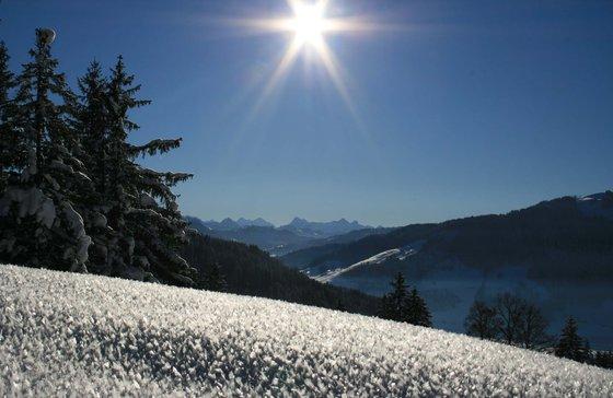 Schneeschuhwanderung - bei Mondschein mit Fondueplausch 1 [article_picture_small]
