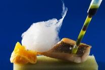 Molekulare Küche - Grundkurs