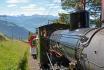 Voyage en train à vapeur-sur la reine des montagnes (pour personnes sans abonnements CFF) 1