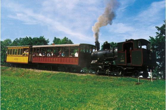 Voyage en train à vapeur - sur la reine des montagnes (pour personnes sans abonnements CFF) 3 [article_picture_small]