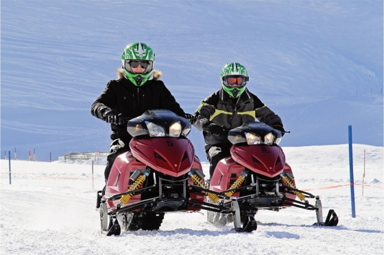 Winter Action in Engelberg - Snowmobile inkl. Fondueplausch 5 [article_picture_small]