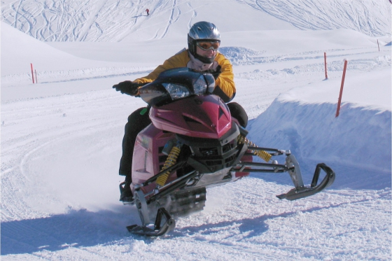 Winter Action in Engelberg - Snowmobile inkl. Fondueplausch 6 [article_picture_small]