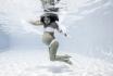 Babybauch Fotoshooting-für schöne Unterwasser Fotos 4