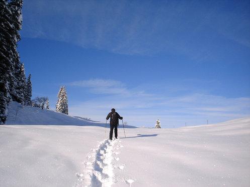 1 Nacht im Berggasthaus - inkl. Schneeschuhwanderung 1 [article_picture_small]