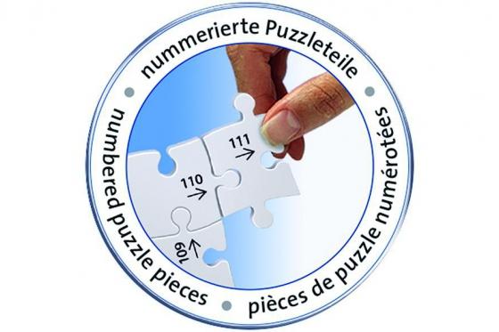Schloss Neuschwanstein  - 3D Puzzle 216teilig 4