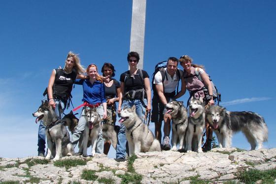 Husky Trekking  - im Sommer für 4 Personen  [article_picture_small]
