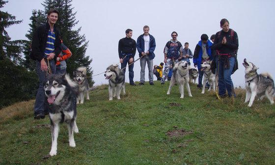 Husky Trekking  - im Sommer für 4 Personen 1 [article_picture_small]