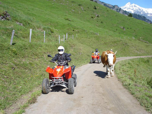 Quad Tour - Quad fahren Beatenberg 4 [article_picture_small]