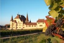 Besuch und Degustation - auf einem Weingut in Cressier