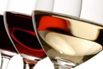Weindegustation - Weinbasics I - in Zürich, Basel, Luzern + Bern