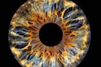 Iris Fotografie - 30x30cm auf Echt-Glas, für eine Person