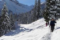 Schneeschutour in Isenfluh - inkl. Guide & Ausrüstung für 2